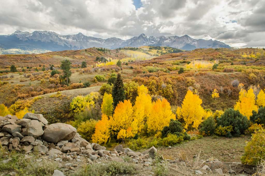 Landscape photo of the Dallas Divide in the San Juan Mountains of Colorado with the fall colors.