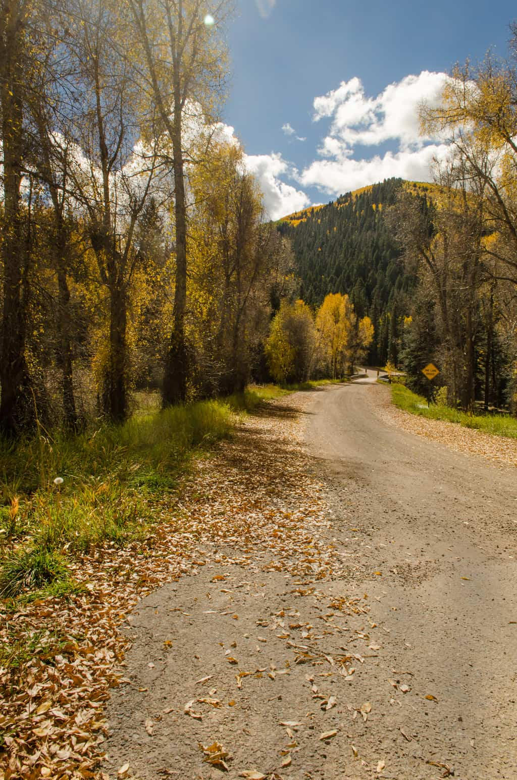 Photo of a country road in the mountains in the fall.