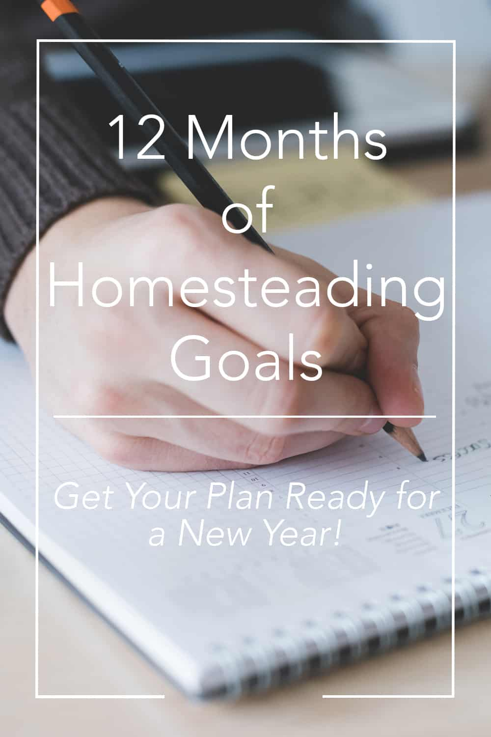 "Pinterest pin for ""12 Months of Homesteading Goals"""