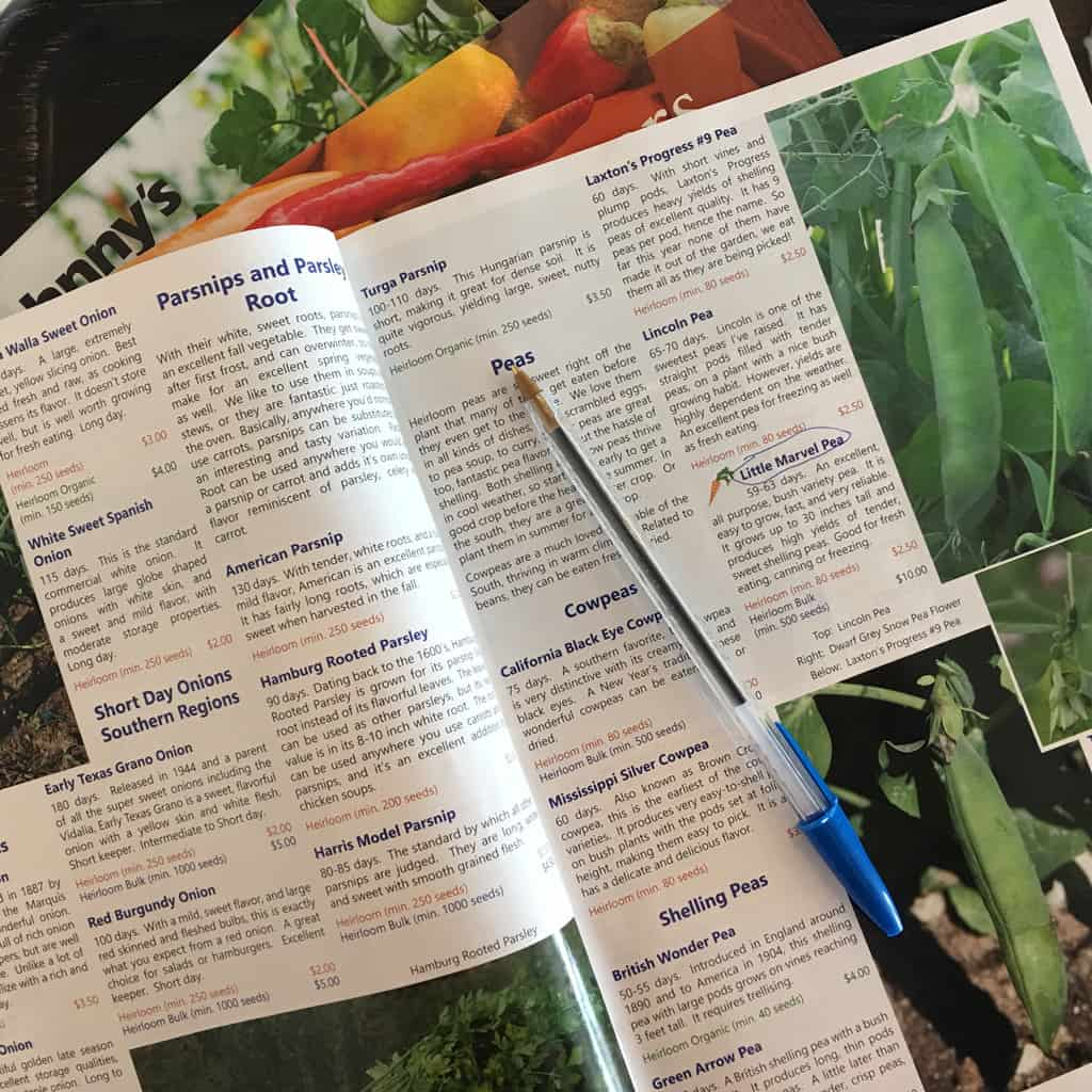 Seed catalog open on a table with a pen on it.
