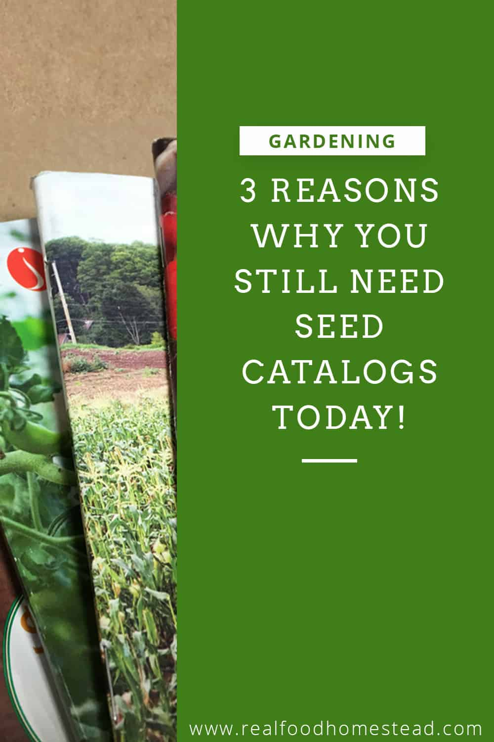 seed catalogs pin