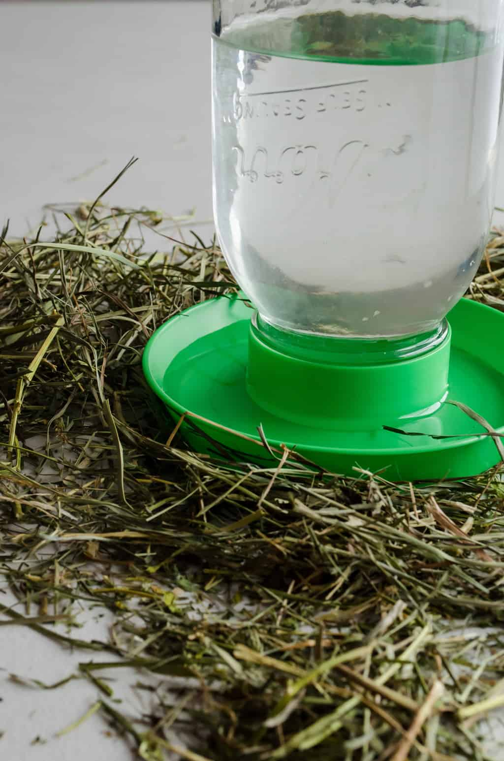 photo of a mason jar chicken waterer