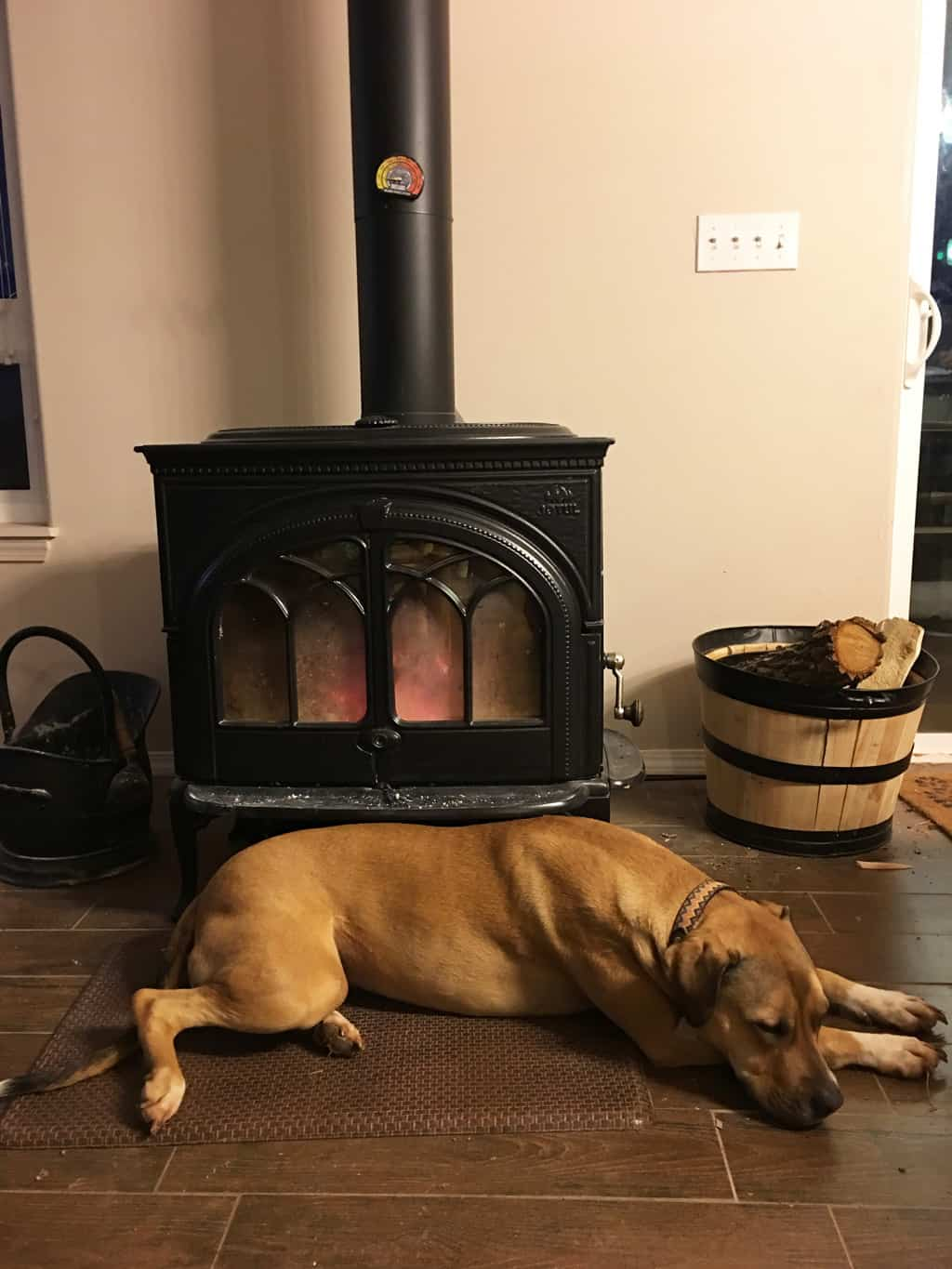 a dog laying in front of a wood stove
