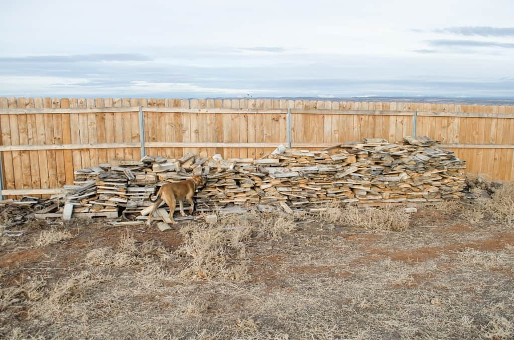 photo of a wood pile