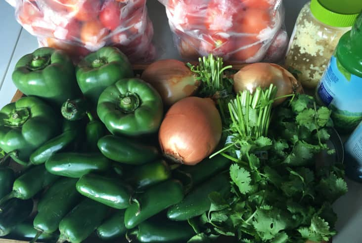 As the winter wears on, my mind turns to the promise of spring. As a talked about in this post, I am ready for spring. I am ready to get outside and start growing food again. I love having fresh food at my fingertips.Winter canning | food preservation | homemade salsa