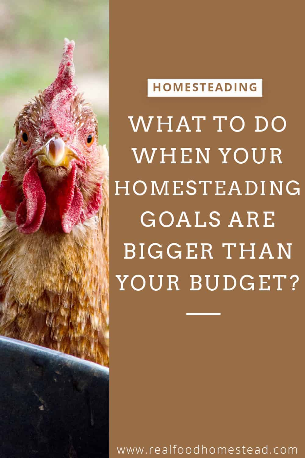 homesteading budget pin