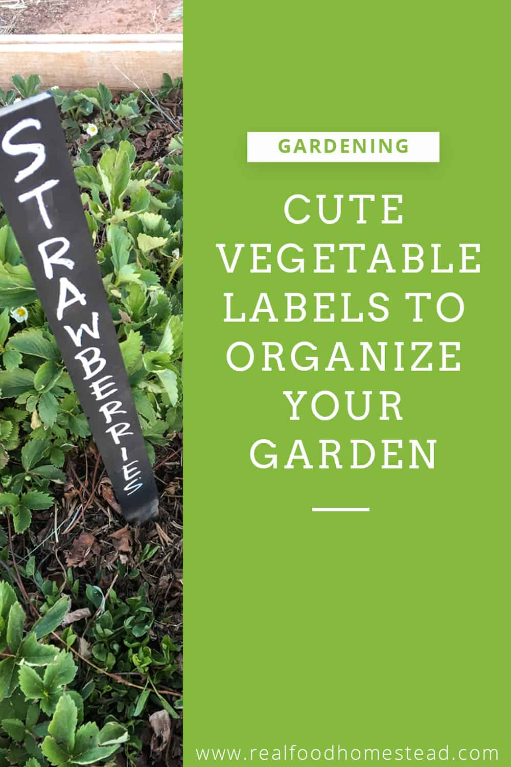 vegetable labels pin