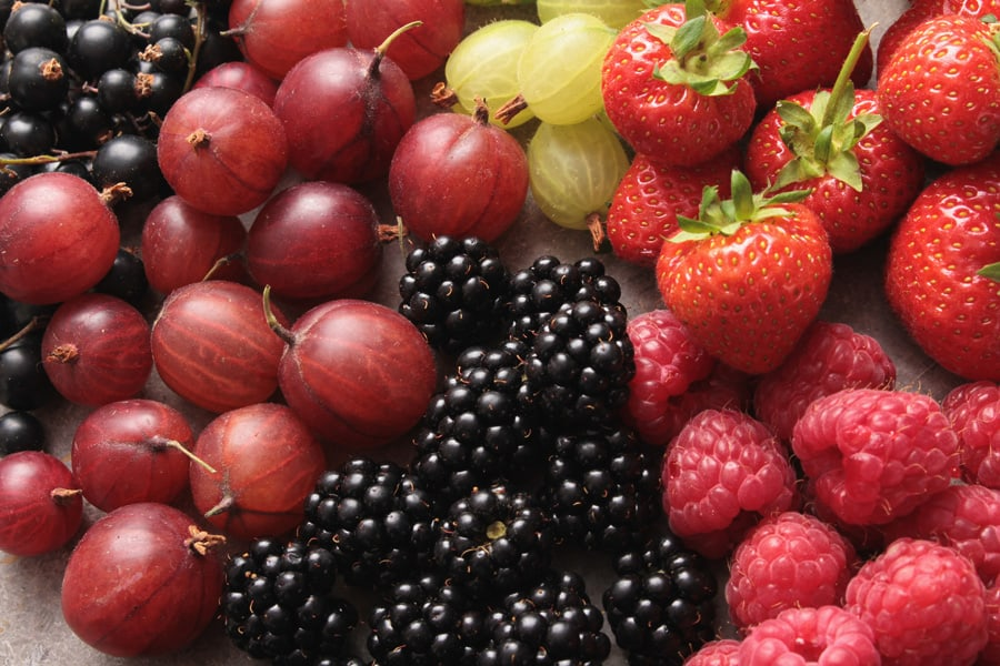 several types of berries together