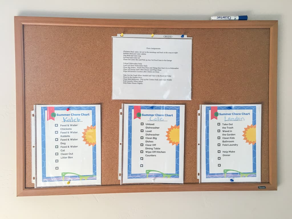 Do you think your kids should have chores over the summer? Click to get the free PDF download of our blank summer chore chart and get started today! Summer Chores   Free Chore Chart   Free Download