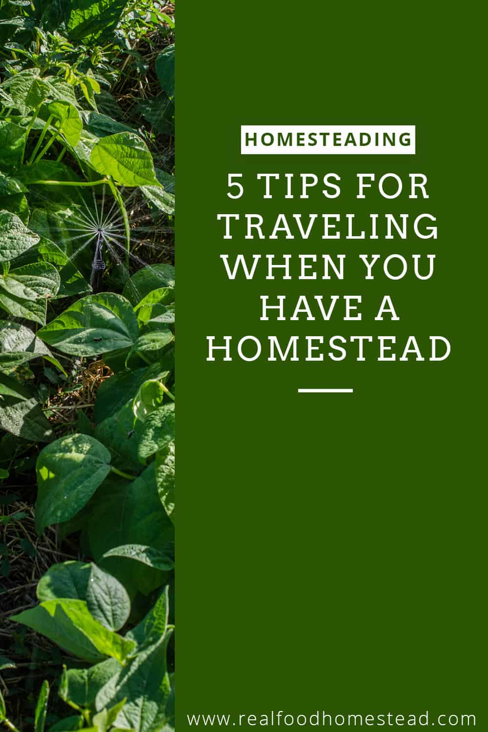 traveling with homestead pin