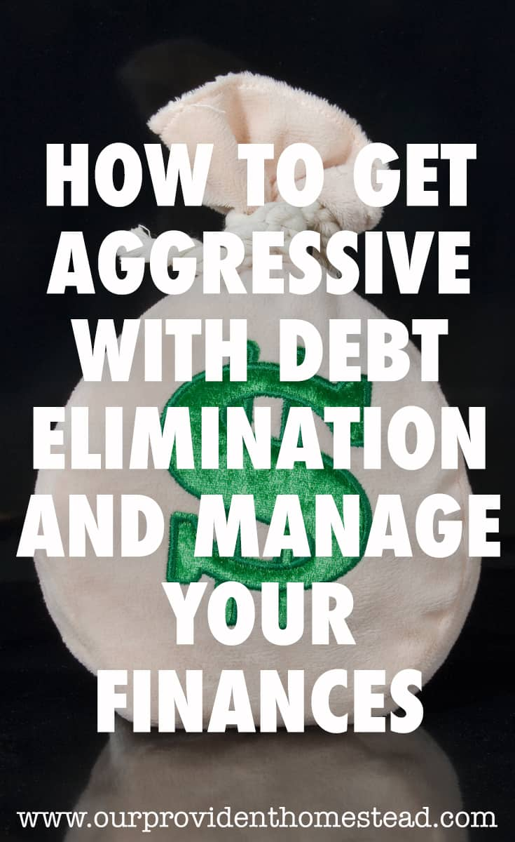 debt elimination pin