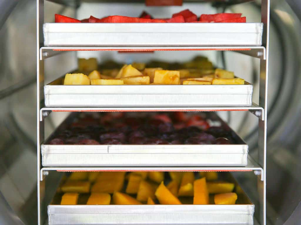 Did you know you can freeze dry your harvest at home? Click here to see the fourth part of our food preservation series and how freeze drying works. Harvest Right | Freeze Drying | Food Preservation