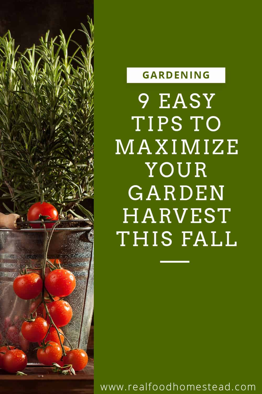 maximize your garden harvest pin