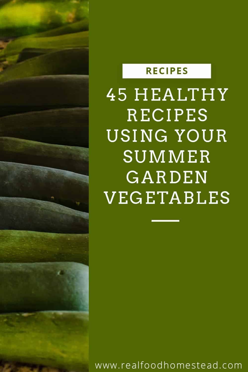 summer garden vegetables pin