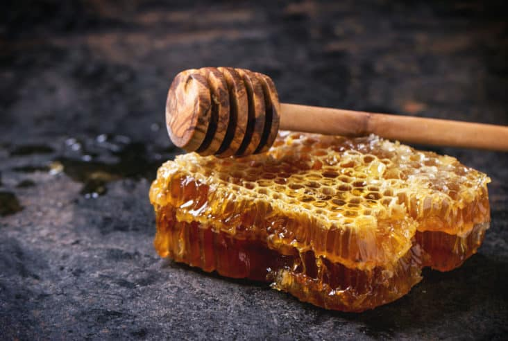 How are my honeybees doing this year? Click here to see the 7 lessons I have learned from my honeybees this year to be a better beekeeper. Beekeeping | Honeybees | Lessons Learned