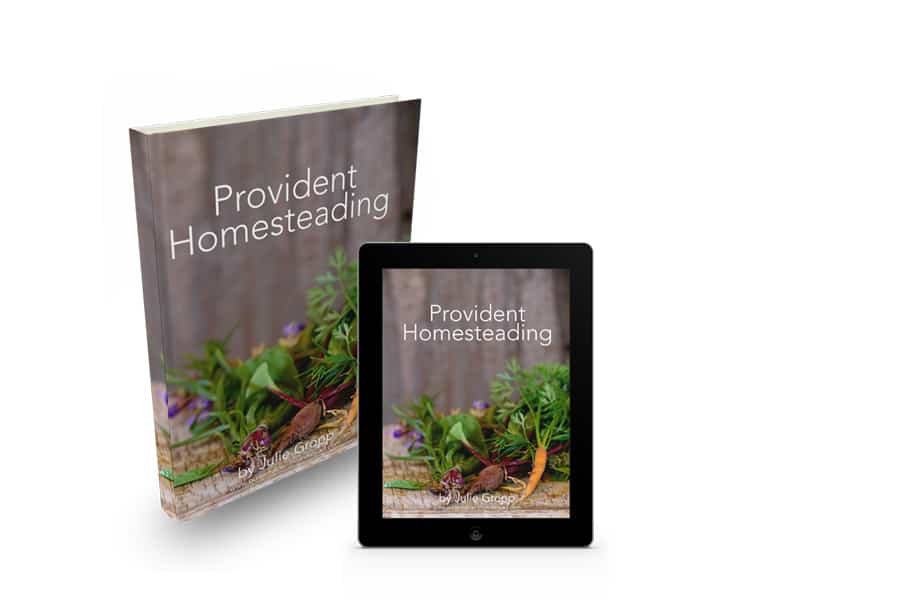 Are you trying to learn the basics of homesteading? Click here to find out how the Provident Homesteading e-book can help turn your dreams into a reality. Homesteading Dreams | Provident Homesteading | Homesteading E-book