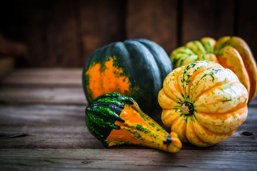 Do you love decorate your home for fall? Click here to see 6 ways to use your garden harvest to decorate for autumn. Fall Home Decor | Garden Harvest | Farmhouse Decor