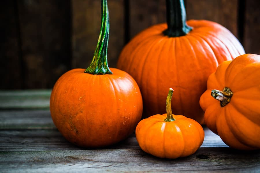 67 Best Homemade Pumpkin Recipes to Spice Up Your Fall