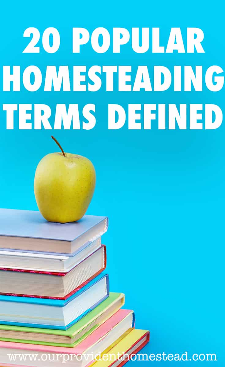 homesteading terms pin
