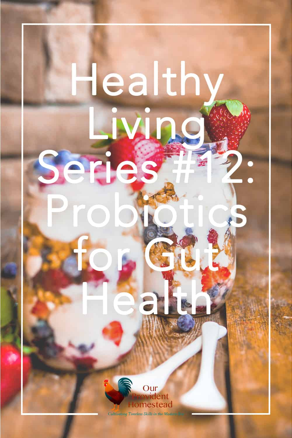 "pinterest pin for ""healthy living series #12: probiotics for gut health"""