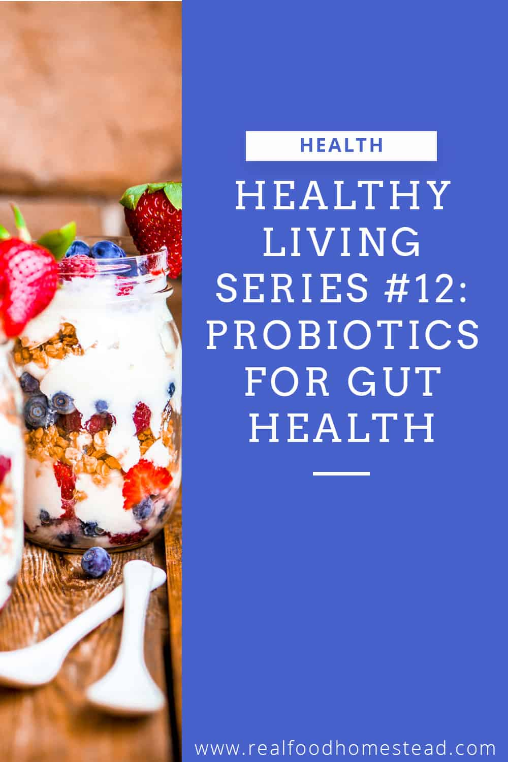 gut health pin