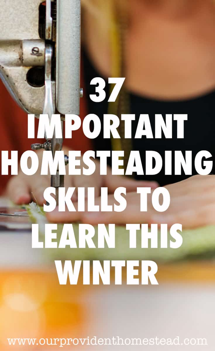 homesteading skills winter pin