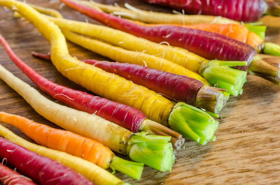 multi colored carrots on wooden background
