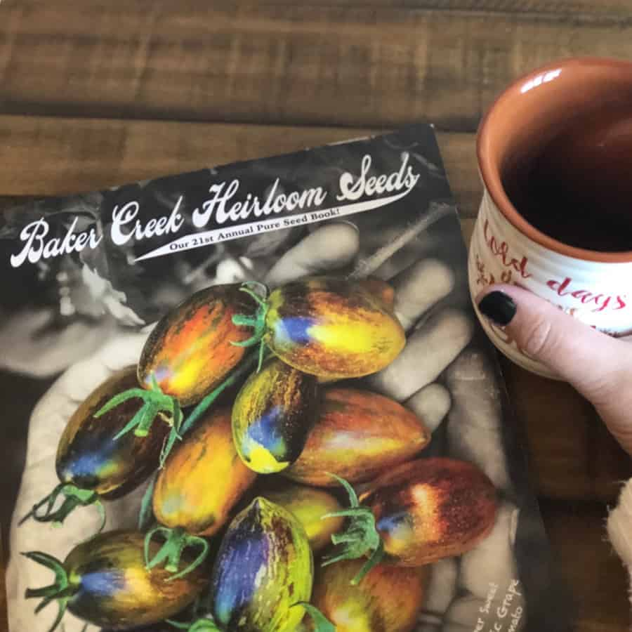 seed catalog and coffee cup