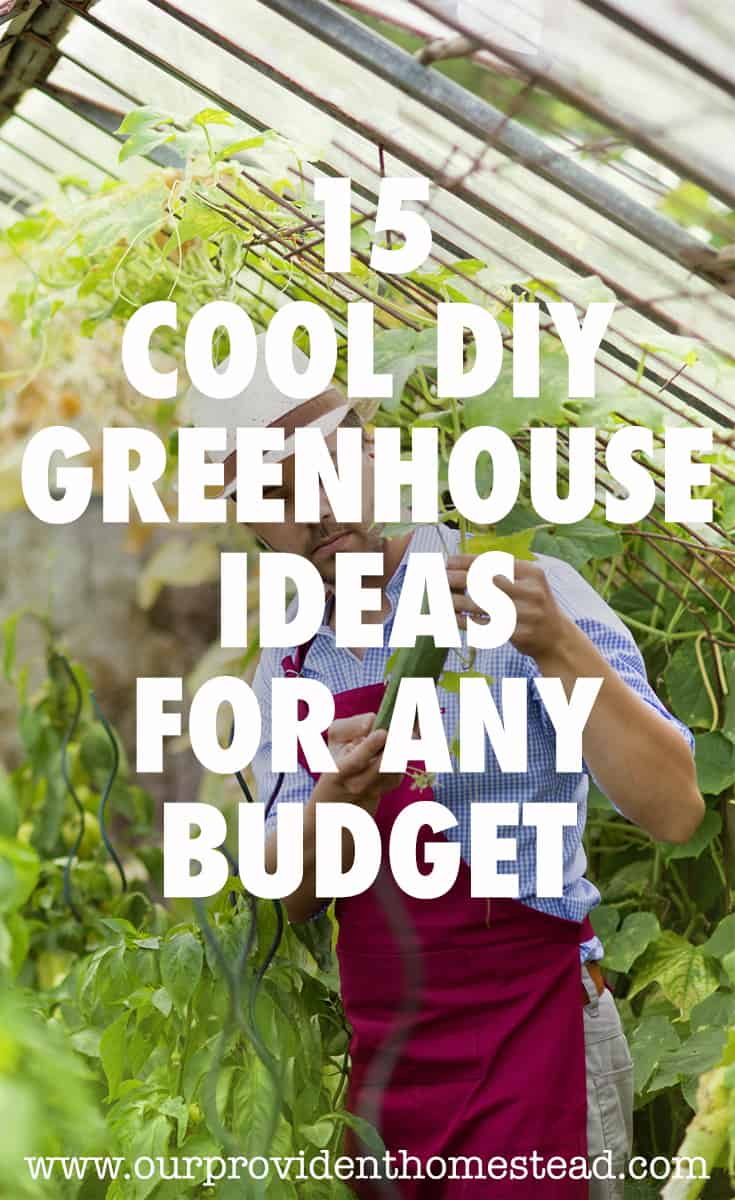greenhouse ideas pin