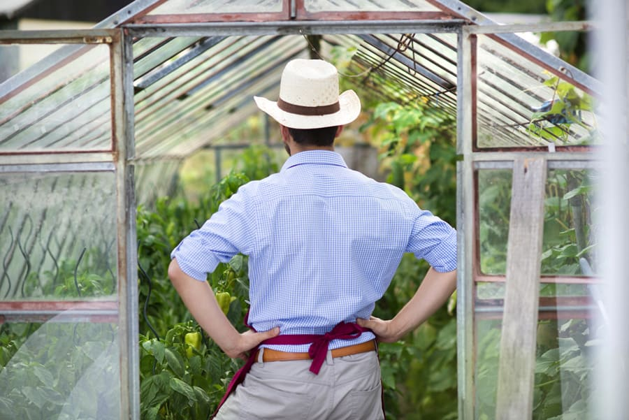 man standing in greenhouse door