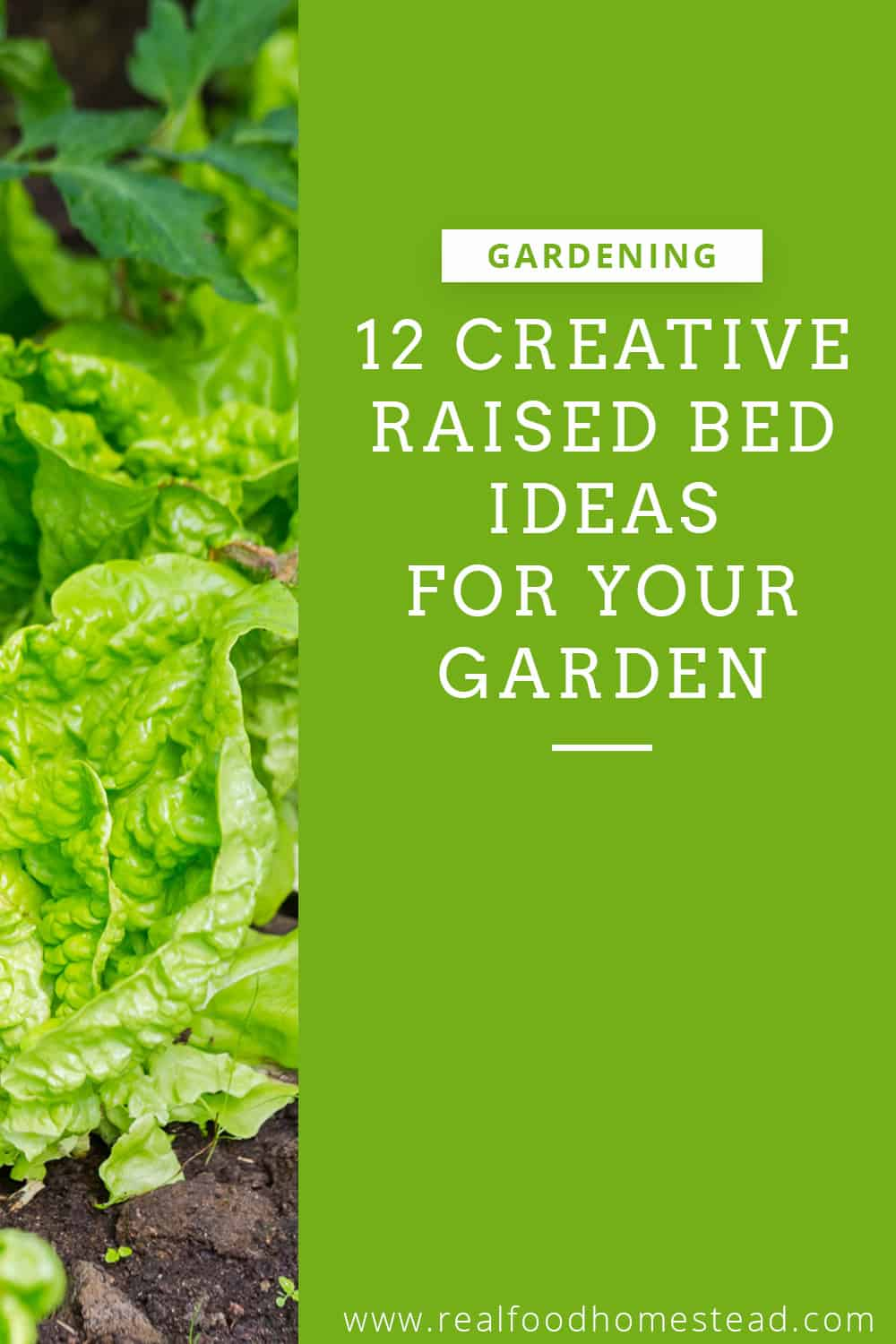 raised bed ideas pin
