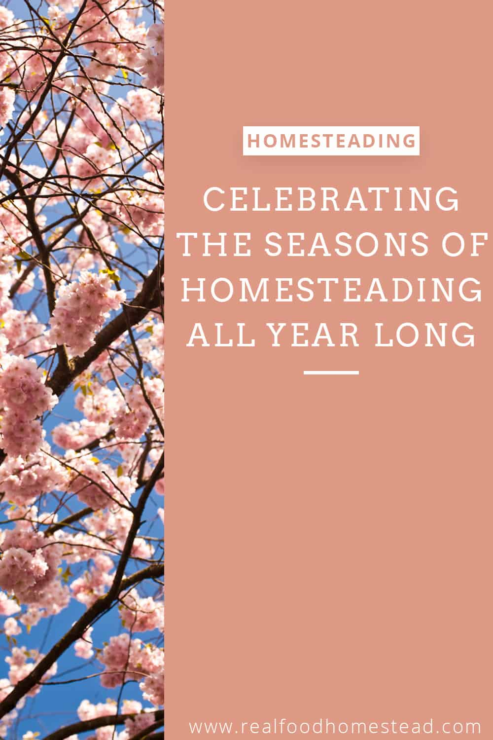 seasons of homesteading pin
