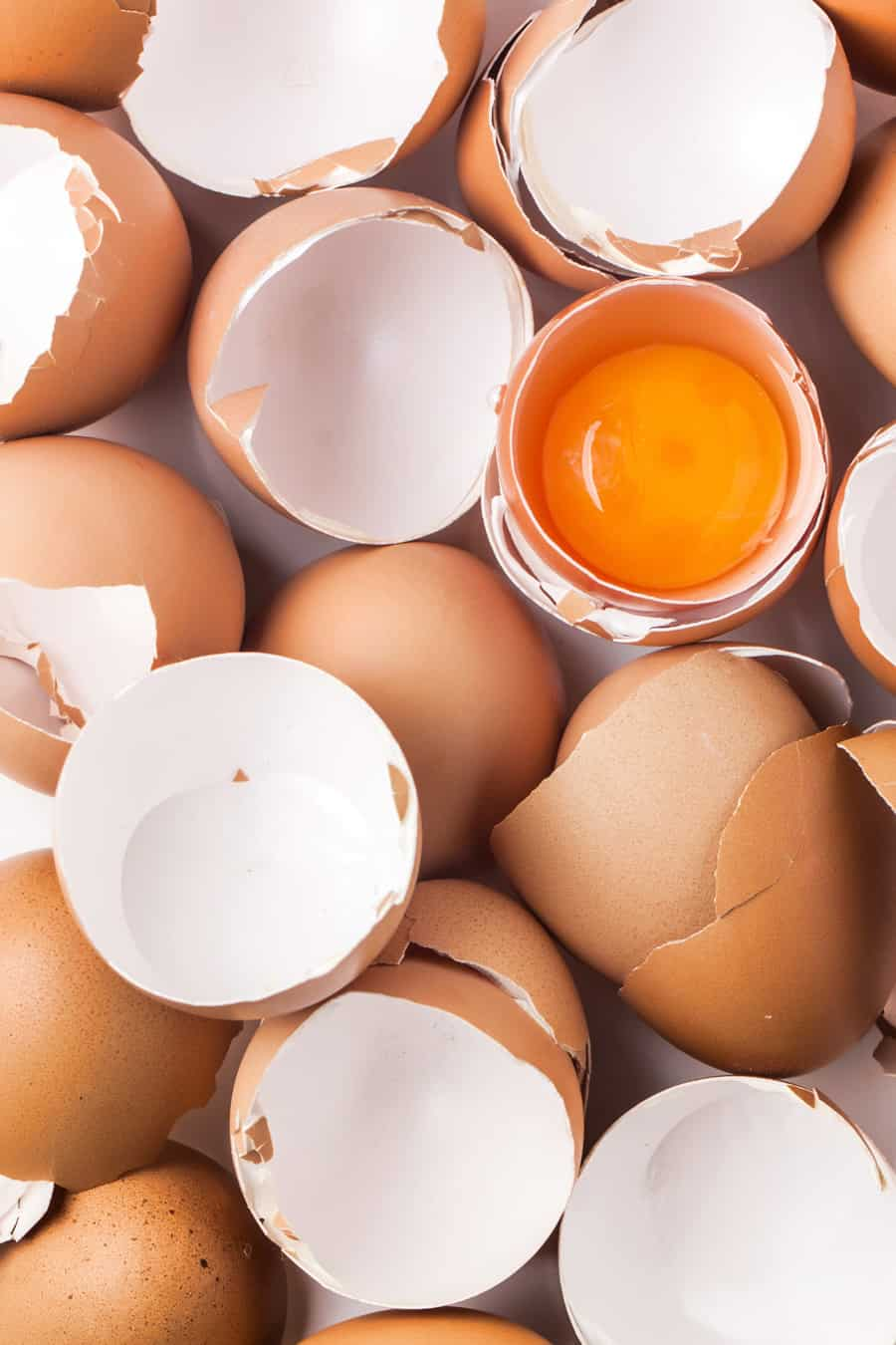 egg shells and yolks