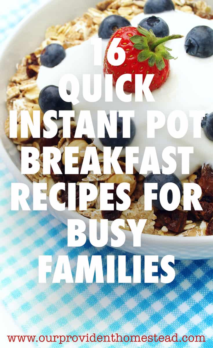 instant pot breakfast pin