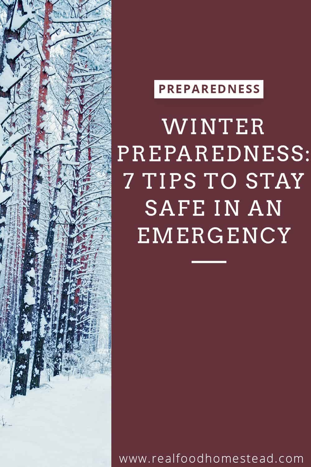 winter preparedness pin