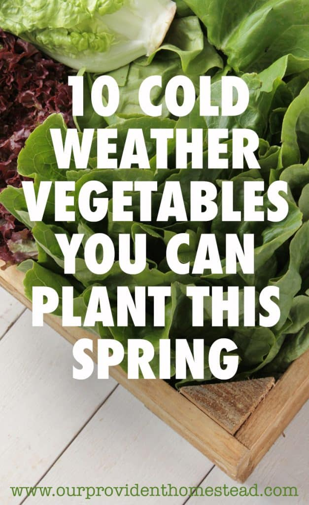 cold weather vegetables pin
