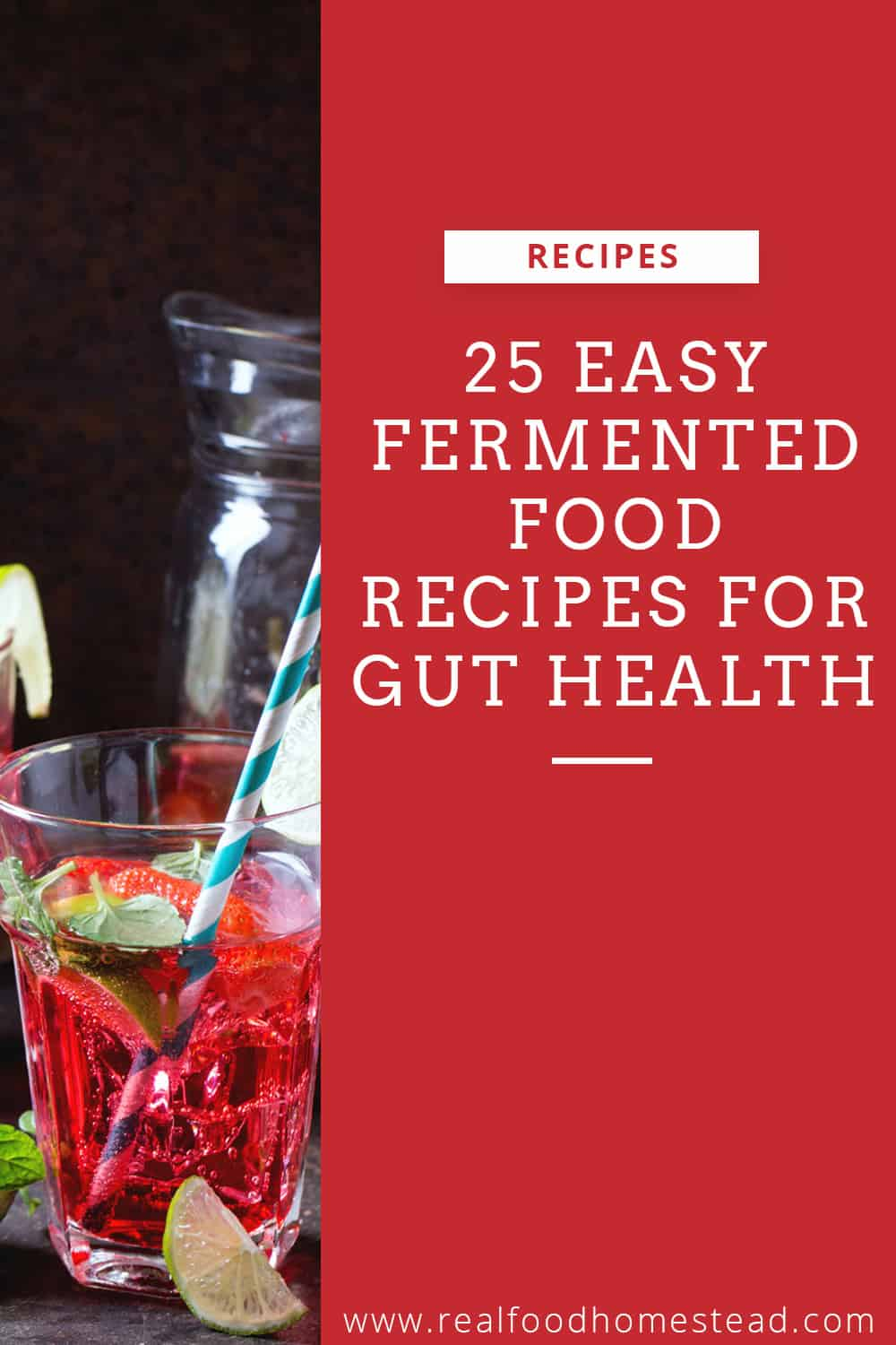 fermented foods pin