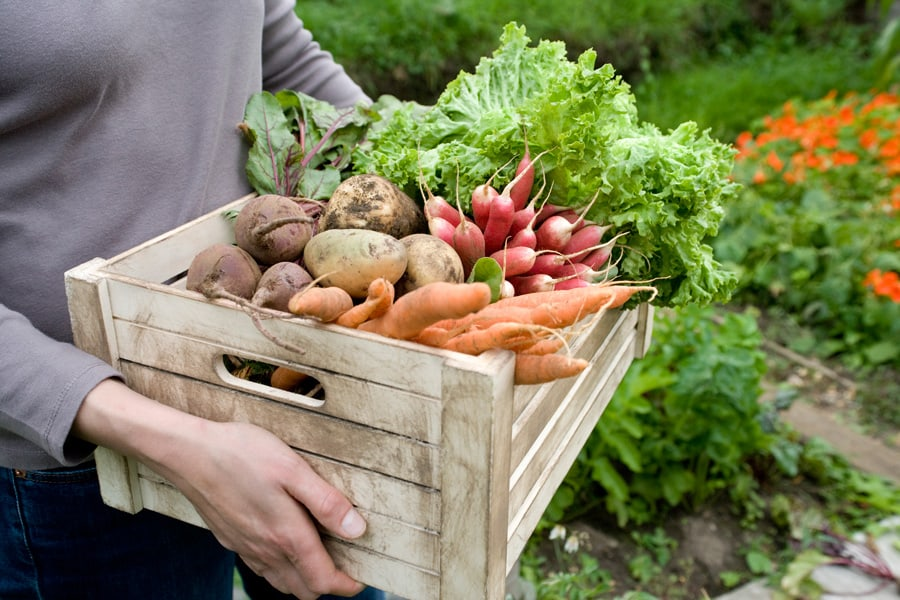 woman carrying box of produce