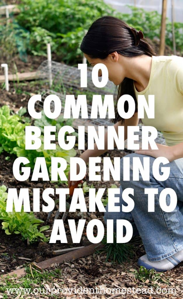 beginner gardening mistakes pin