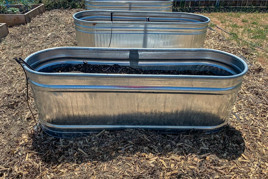 Building A Metal Water Trough Vegetable Garden {An Experiment}