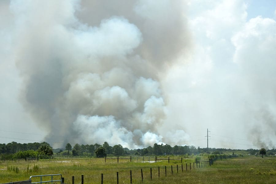 fire in field with lots of smoke
