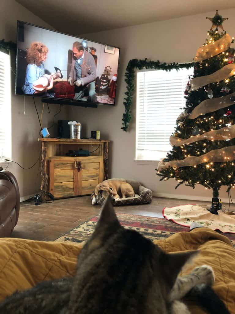 family watching a Christmas movie