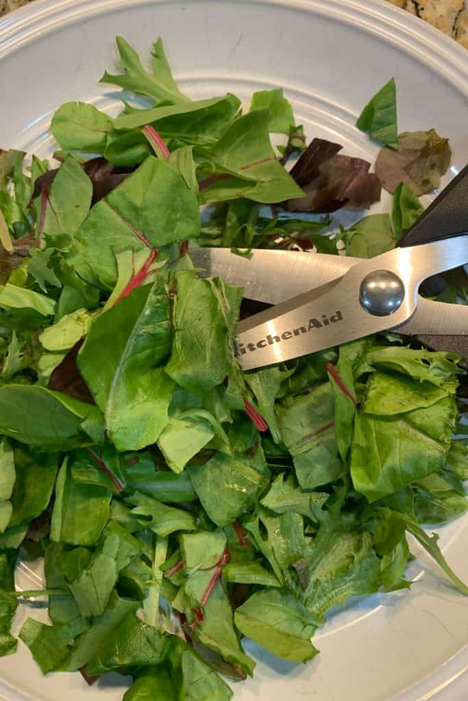 salad and kitchen scissors