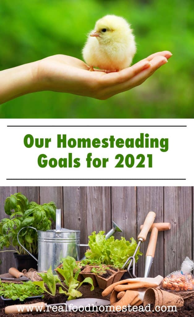 homesteading goals pin